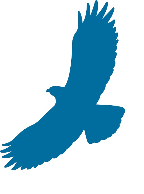 Eagle Ridge Blue Logo - No text